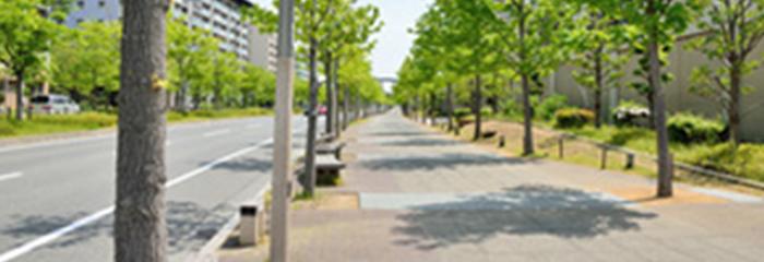 歩道・車道